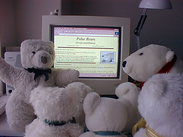 Ewer bears learn about polar bears